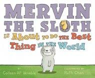 Mervin-the-Sloth