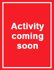 ScottBros-activity