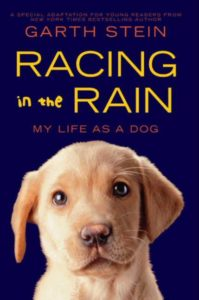 Racing in the Rain My Life as a Dog by Garth Stein