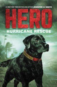 Hero: Hurricane Rescue by Jennifer Li Shotz